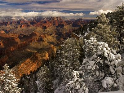 Fresh Snow at the South Rim of Grand Canyon National Park