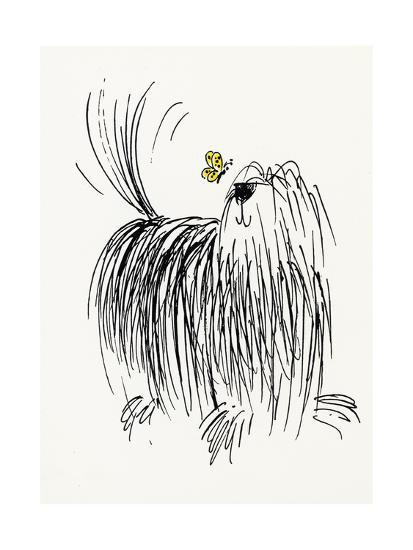 Shaggy Dog with Butterfly Posters at AllPosters.com