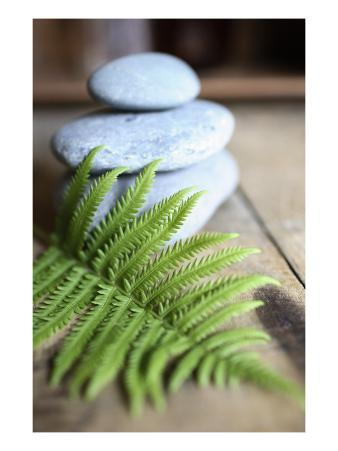 Stacked Stones with Fern Leaf
