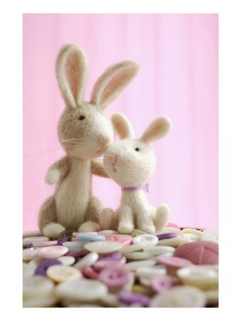 Two Bunny Toys