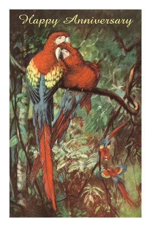 Happy Anniversary, Preening Macaws