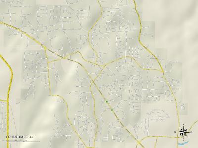 Political Map of Forestdale, AL