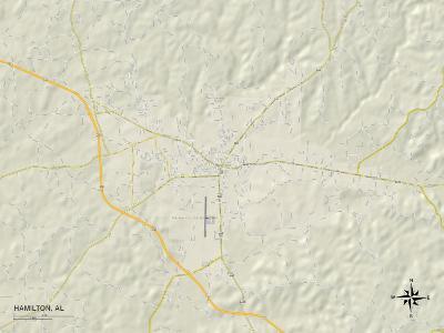 Political Map of Hamilton, AL
