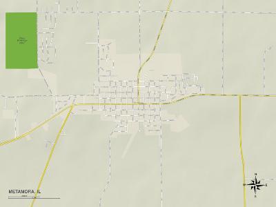 Political Map of Metamora, IL