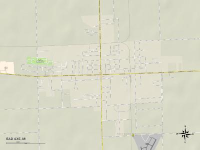 Political Map of Bad Axe, MI