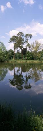 Reflection of Trees in Water, Garden of Lednice, Lednice, Moravia, Czech Republic