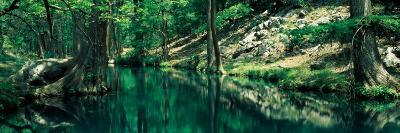 Stream in a Forest, Honey Creek, Texas, USA