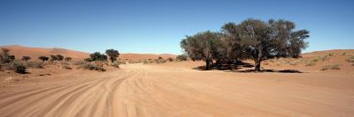 Tire Tracks in an Arid Landscape, Sossusvlei, Namib Desert, Namibia