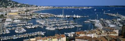 View of a Harbor, Cannes, Provence-Alpes-Cote D'Azur, France