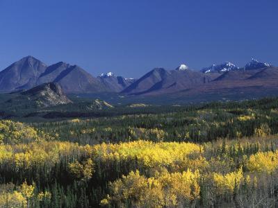 Fall Colours over Denali National Park, Alaska, USA