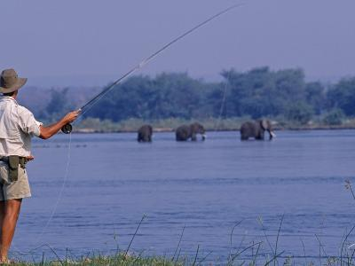 Lower Zambezi National Park, Fly-Fishing for Tiger Fish on the Zambezi River Against a Backdrop of