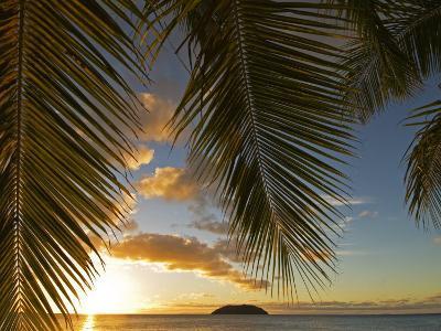 South Pacific, Fiji, Kadavu, Sunset Through Plams from the Beach on Dravuni Island