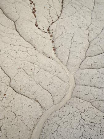 Erosion Patterns in a Small Drainage, Bisti Wilderness, New Mexico
