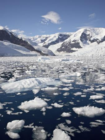 Ice Chunks, Neko Harbor, Antarctic Peninsula, Antarctica, Polar Regions