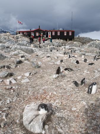 British Base and Post Office, Port Lockroy, Antarctic Peninsula, Antarctica, Polar Regions