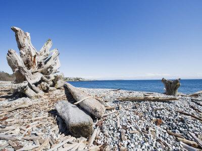 Beach on the Strait of Juan De Fuca, Victoria, Vancouver Island, British Columbia, Canada