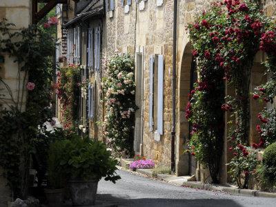 Flower Bedecked Street, St. Cyprien, Dordogne, France, Europe