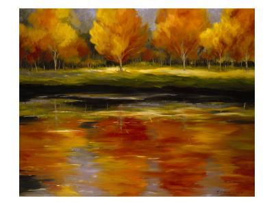 Reflections of Autumn