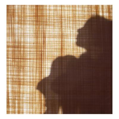 Silhouette of a Young Girl Sitting