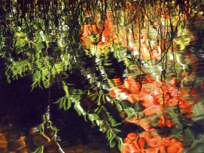Reflections, West Fork of Oak Creek, Sedona, Arizona, USA
