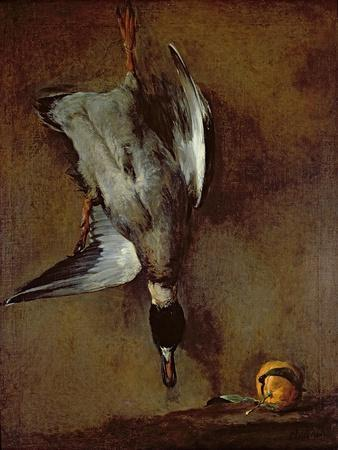 A Mallard Duck hanging on a wall with a Seville orange, 1720-30