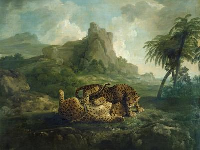 Leopards at Play, c.1763-8