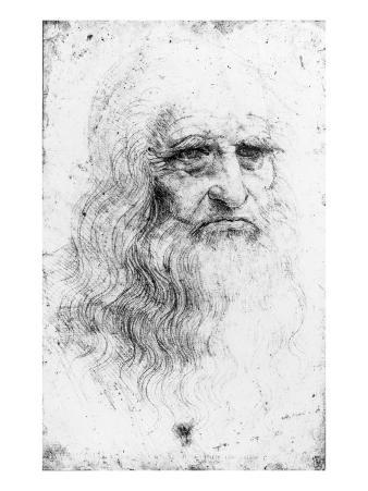 Portrait of a Bearded Man, Possibly a Self Portrait, c.1513