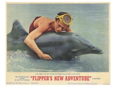 Flipper's New Adventure, 1964