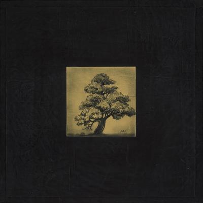 Bonsai Sacred Tree