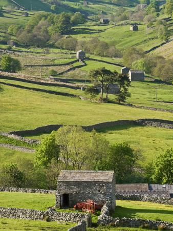Traditional Barns and Dry Stone Walls in Swaledale, Yorkshire Dales National Park, England