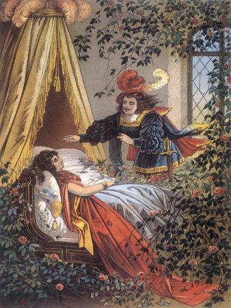 The Prince Discovers the Sleeping Princess