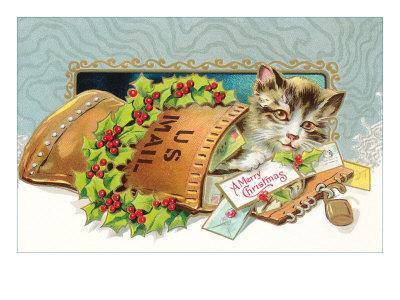 Kitten in Christmas Stocking