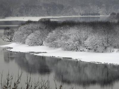 Snow Covered Trees are Seen Along the Banks of the Moskva River on the Outskirts of Moscow
