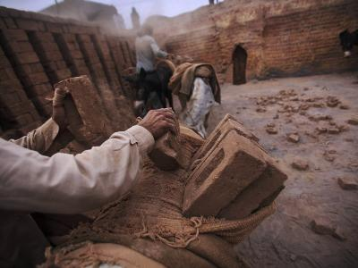 Workers Load the Bricks onto the Backs of Donkeys in Pakistan