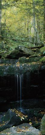 Waterfall in a Forest, Great Smoky Mountains National Park, North Carolina, USA