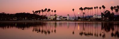 Reflection of Trees in Water, Santa Barbara, California, USA