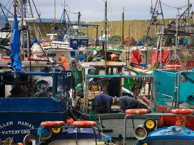 Helvick Fishing Harbour, Ring Gaeltacht County Waterford, Ireland