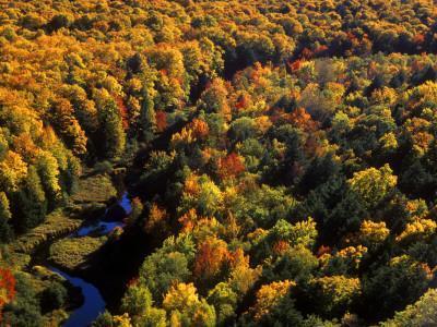 Big Carp River at Porcupine State Park, Up Michigan, USA