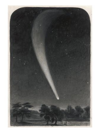 A Spectacular View of Donati's Comet Observed over Woods