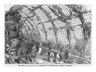 Conservatory of the Horticultural Society, Chiswick