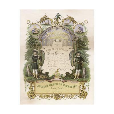 Certificate of Membership of James Stedman in the Ancient Order of Foresters