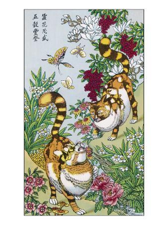 Magic Cats of China