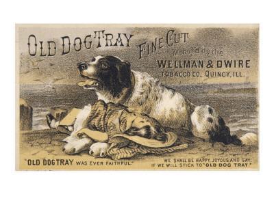 Old Dog Tray Was Ever Faithful (Newfoundland)
