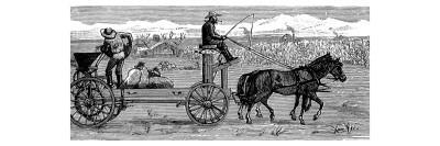 On a Horse Drawn Cart the Farmer Takes Out the Seed and Casts it over the Field