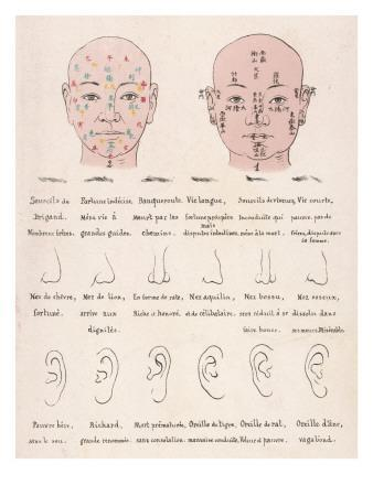The Chinese System of Physiology - How Your Facial Characteristics Reveal Your Character