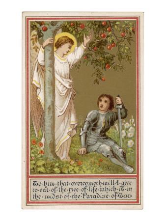 The Tree of Life, a Christianised Interpretation