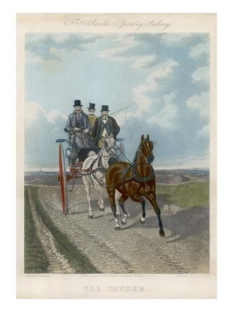 Three Gents Take a Ride in the Country in their Two-Horse Tandem Carriage