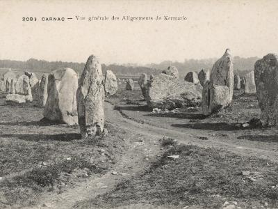 General View of the Alignments of Kermario