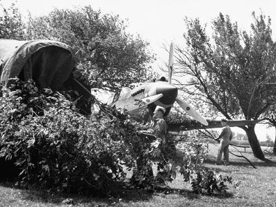 Members of US Army's Interceptor Command Practicing Camouflage of Aircraft