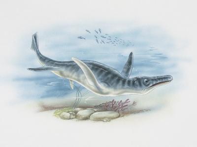 Liopleurodon Swimming Underwater